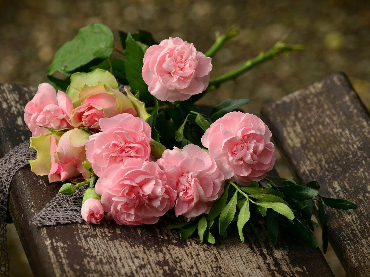 Да подаряваш ли цветя на Св. Валентин?